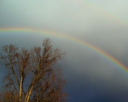 02232009-rainbow21